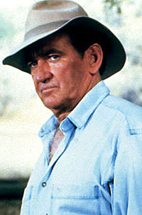 The Complete Rod Taylor Site: Falcon Crest